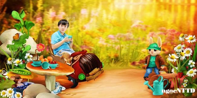 NTTD_Angi_My friends garden fairies_LO3_web