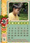 NTTD_Calendar 2014_5x7in_03Mar