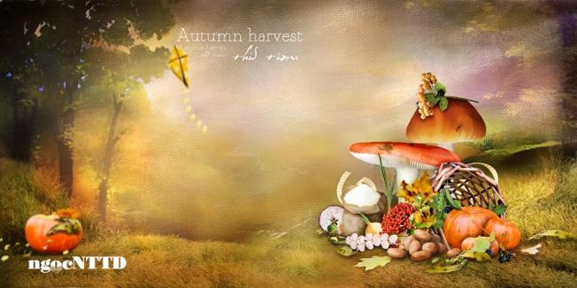 NTTD_Marta_Autumn harvest